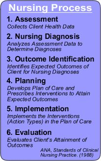 The Nursing Process as established by the ANA (often on many NCLEX-Style questions).