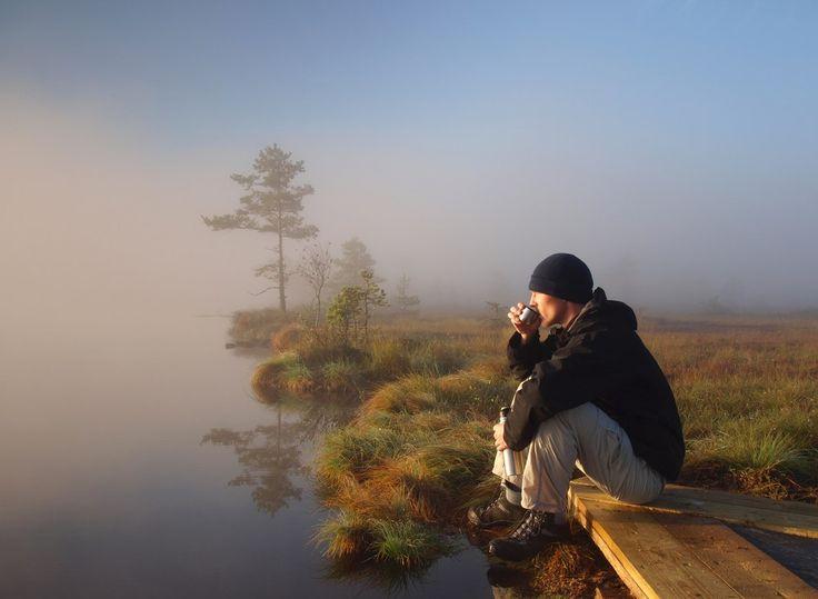 #Цель #Смысл_жизни #Мотивация Один день, если он прожит с толком, может быть намного полнее, чем бесцельно прожитая жизнь.  © Коллин Хоук. Судьба тигра