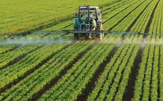 Observational Study Links Monsanto's Roundup to Chronic Kidney Disease 2