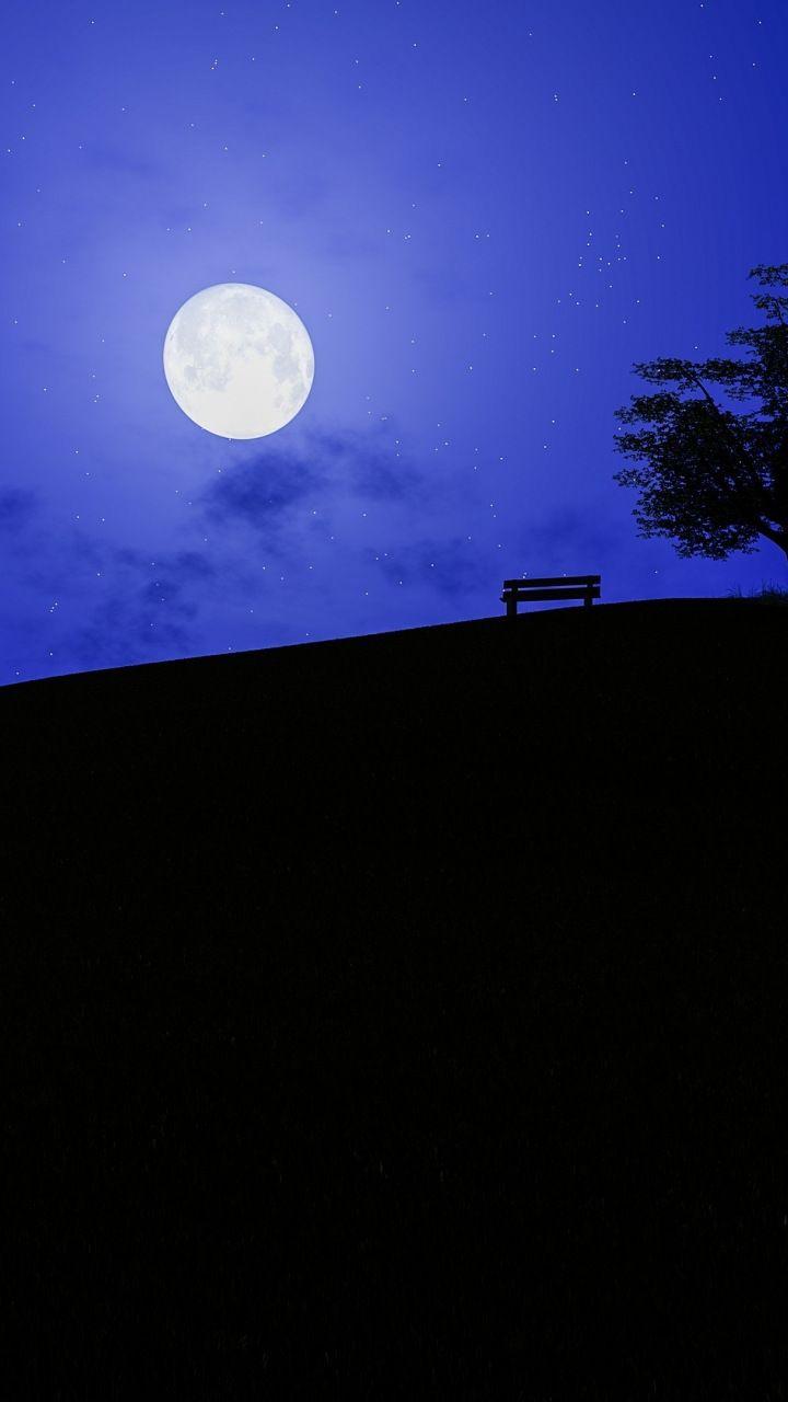 Night Moon Landscape Tree 720x1280 Wallpaper