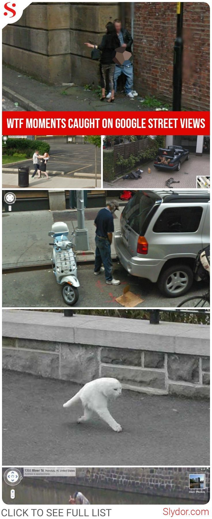 Funny pictures caught on google street view