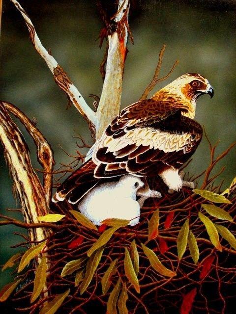 Beautiful Eagle & Chick    $3000