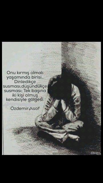 Yalnızlığın ustası Özdemir Asaf