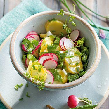 Kräuter-Kartoffelsalat mit Radieschen