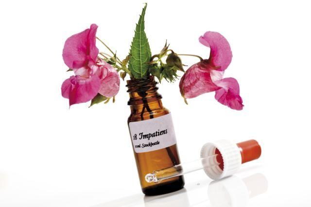 Ha escuchado hablar de los remedios florales de Bach? Conozca más sobre cómo funcionan estas esencias florales y por qué sanan el cuerpo y la mente.