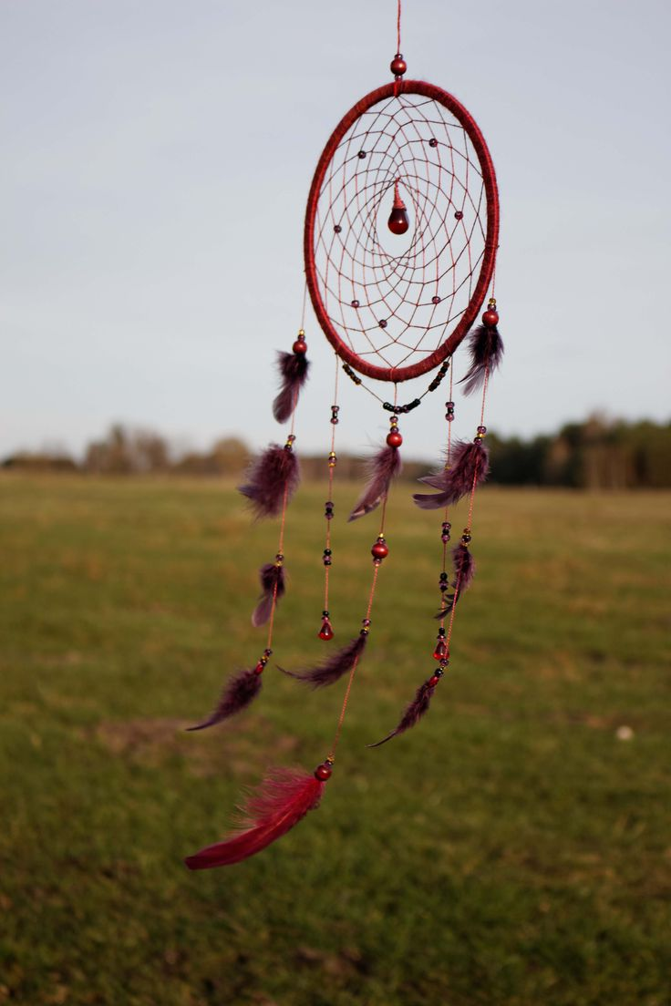 Dream Catcher/ Dreamcatcher/ Burgundy Bird