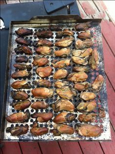 Recipe for smoked oysters - a lot of seasoning though in brine