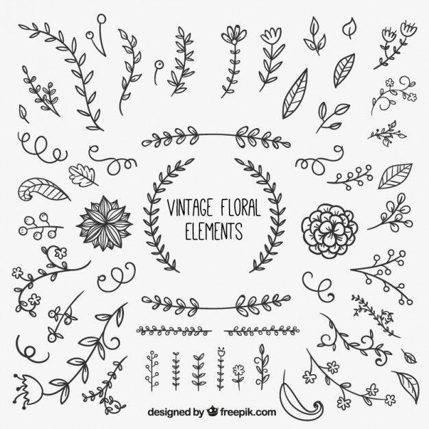 elementos florais do vintage Vetor grátis