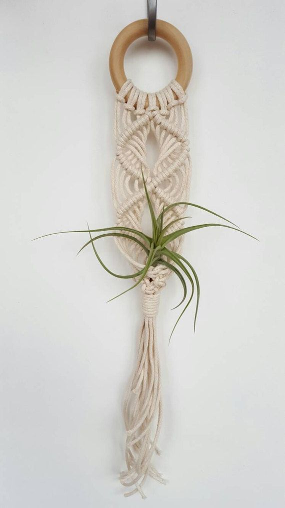 Create a living wall feature in your home with this Monkey and the Bear Cotton Rope Air Plant hanger. The hanger measures approximately 45cm long and will house a small air plant and is designed to sit against the wall. The hanger is for inside use. The Air Plants pictured are not included. Handmade in the Hunter Valley by Mia (with the occasional help from a monkey and a bear!). Check out @monkey_andthe_bear on Instagram. FREE Shipping within Australia.