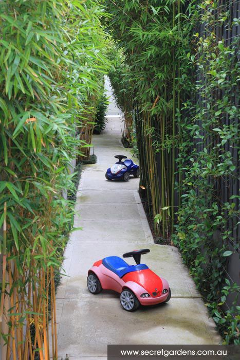 Bamboo lined side path - great use of a usually wasted outdoor area as a kids bike track