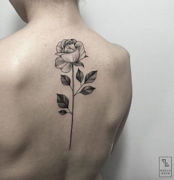 Black and grey ink rose on back by Marla Moon