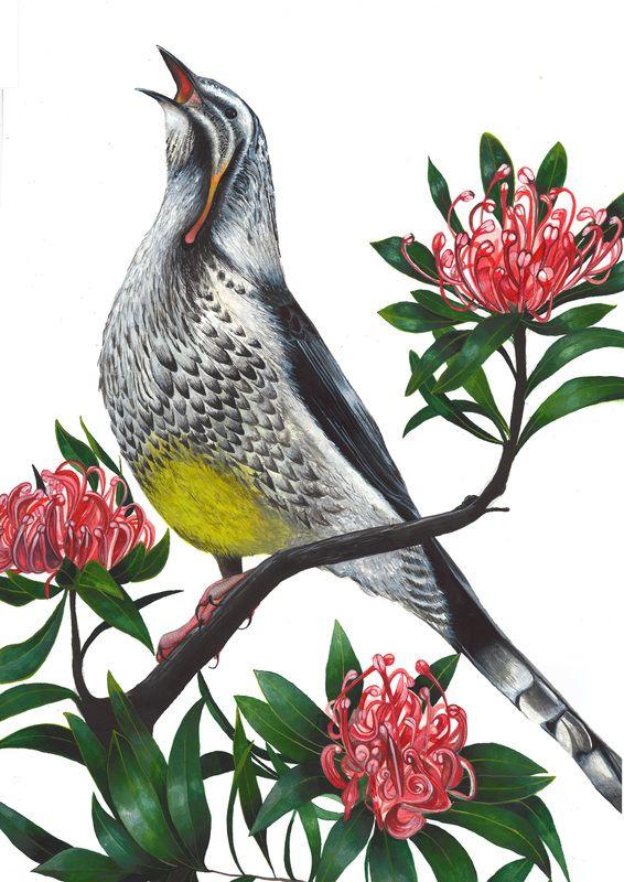 Helen Barnard - I love this piece! Tasmanian artist with impressive attention to detail.
