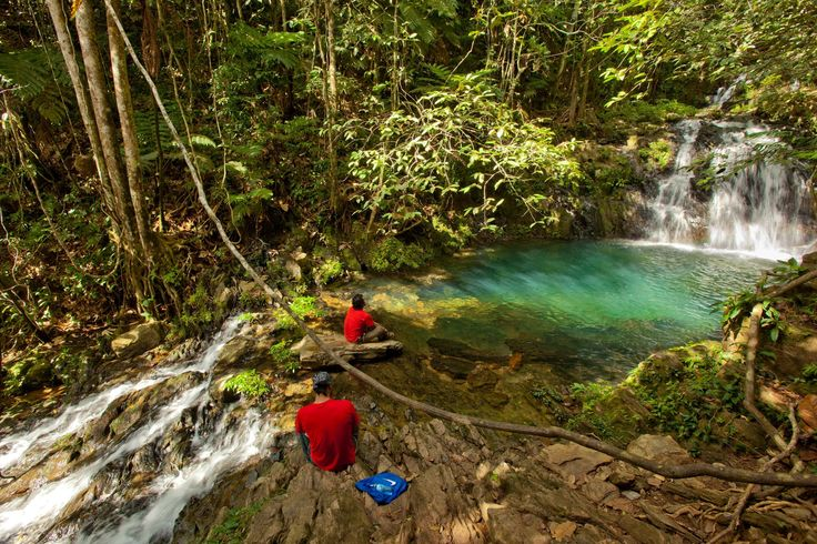 BELIZE RAINFOREST | All Inclusive Belize Vacation Package in the Mayan Rainforest Newly ...