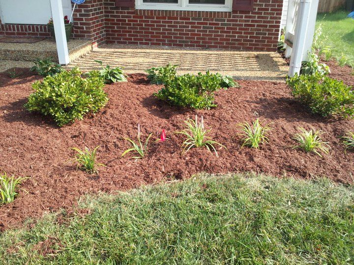 Most Clients Like To Start Off Simple No Problem Liriope Azaleas And Hostas Landscaping IdeasWeedDiy