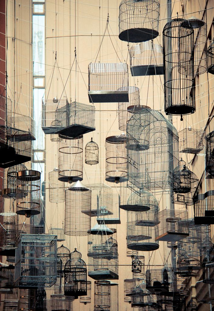 I love the look of too many lanterns clustered together : these bird cages have the same effect.  Moroccan lanterns anyone?