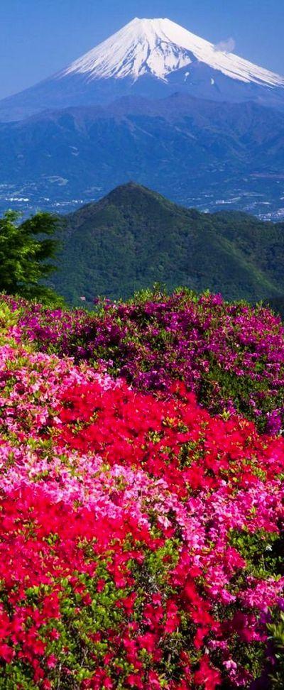 Viaje a Japón - www.muchomasqueunviaje.com