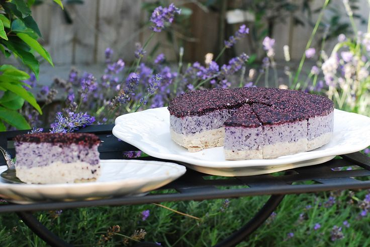 Raw Blueberry Cheesecake-5