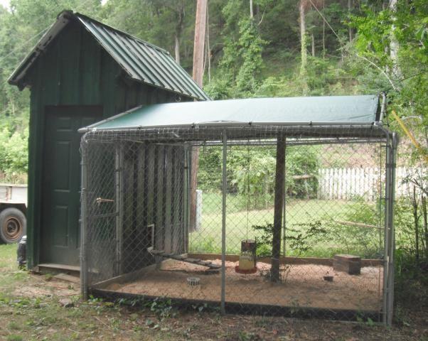 dog run chicken coop | http://www.backyardchickens.com ...