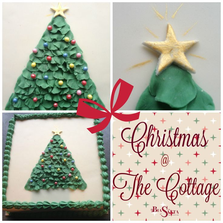 Christmas Cake - again, a very easy design that is perfect for beginners