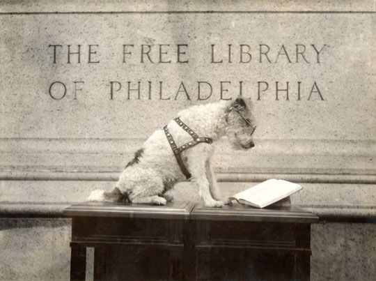 "Knee-Hi, the Free Library mascot, ""reading"" outside the Main Library Building, April 22, 1938"
