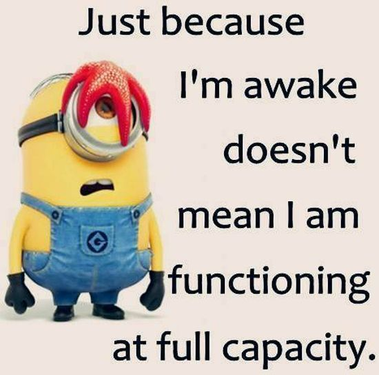 Funny Minions Pictures Of The Week -