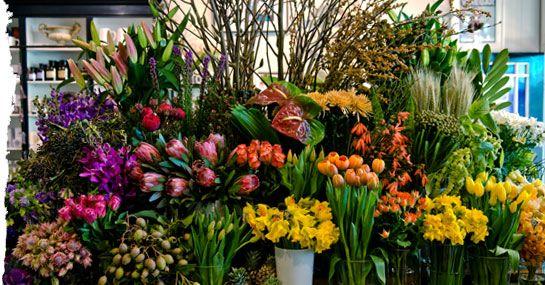 Flower Shop Geelong   Seasonal Flowers   Bridal Bouquet   Floral Arrangements