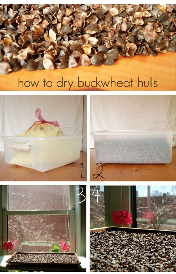 How to rejuvenate the buckwheat hulls in a buckwheat pillow  using the sun!  #buckwheat pillows #comfycomfy