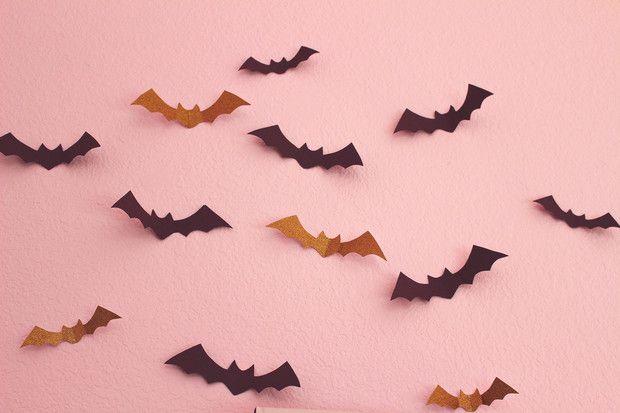 Adornos para Halloween que no te fallarán en tus próximas fiestas. Adornos Halloween, Girl Birthday, Girls, Party, Guys Birthday Parties, Accessories, Toddler Girls, Daughters, Maids