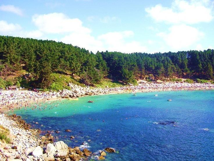 Playa El Canelo y Canelillo,Algarrobo, Chile