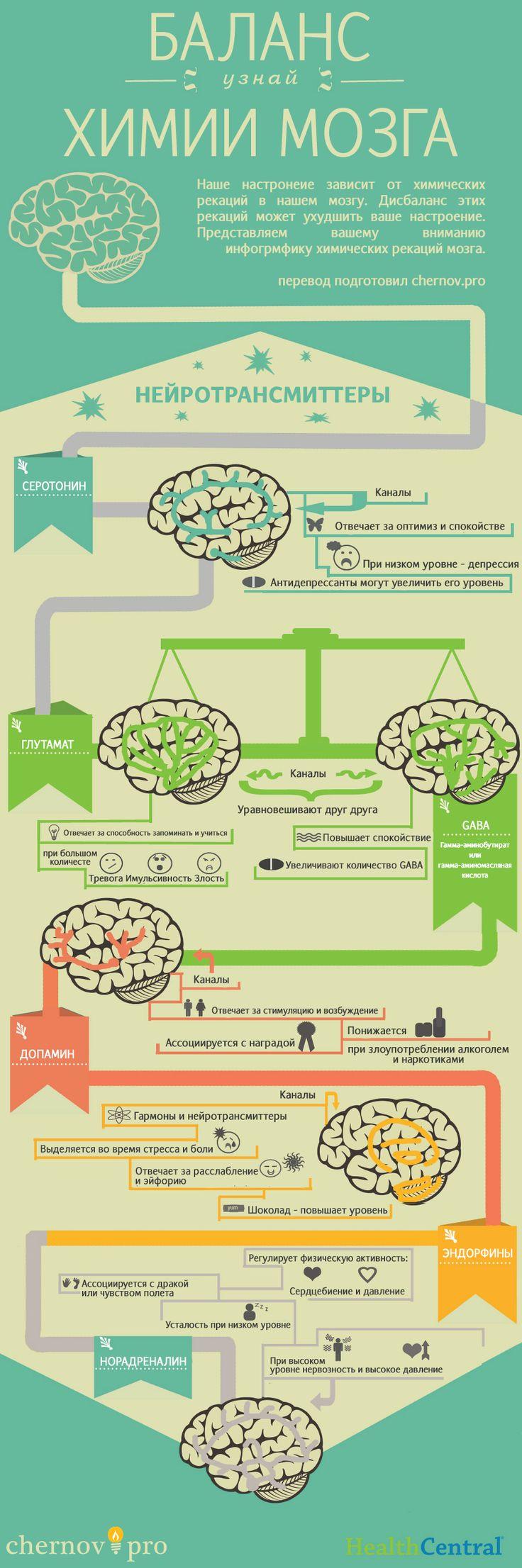 Влияние гормонов мозга на настроение - Секретные материалы SemDorog.ru