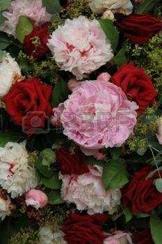 Červená růže a růžové pivoňky ve svatební uspořádání photo