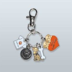 Supporter Key Charm
