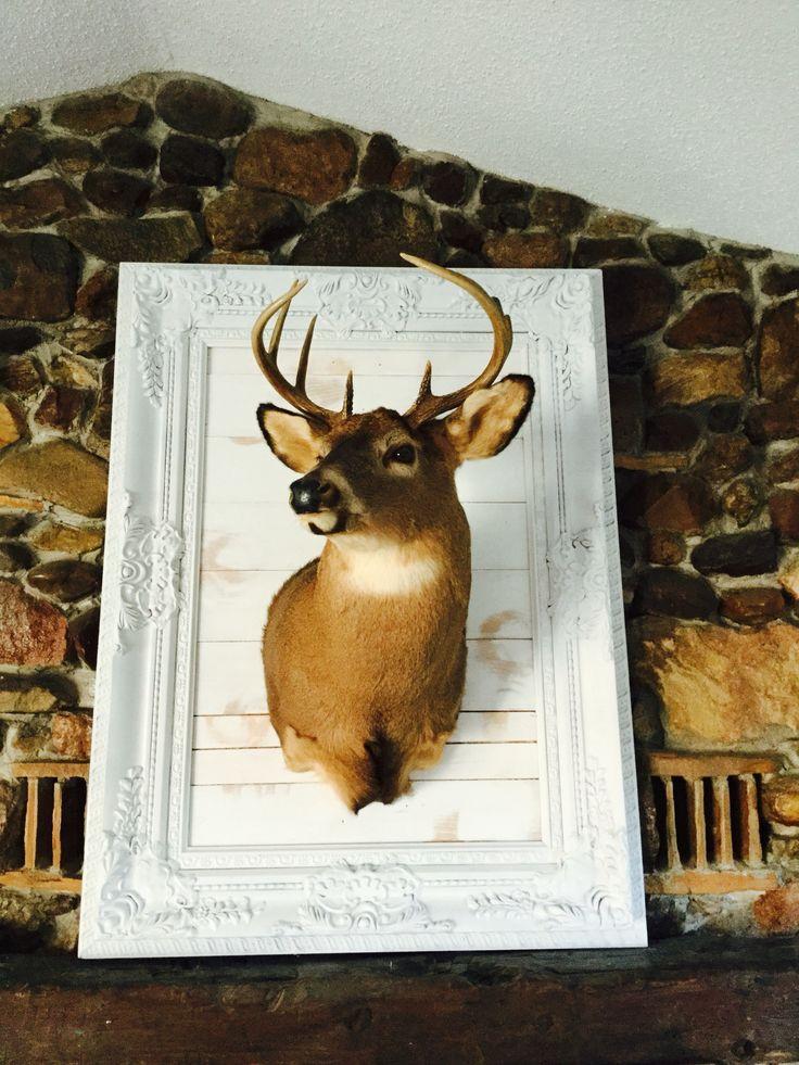 Repurposed frame as a deer mount!