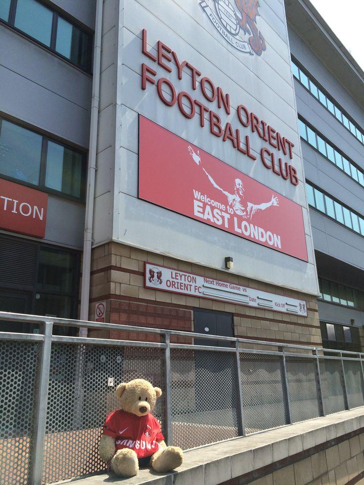 Teddy at Leyton Orient football Stadium #riseagain