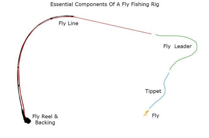 The Two Fly Setup The Fly Fishing Basics Vliegvissen Vissen