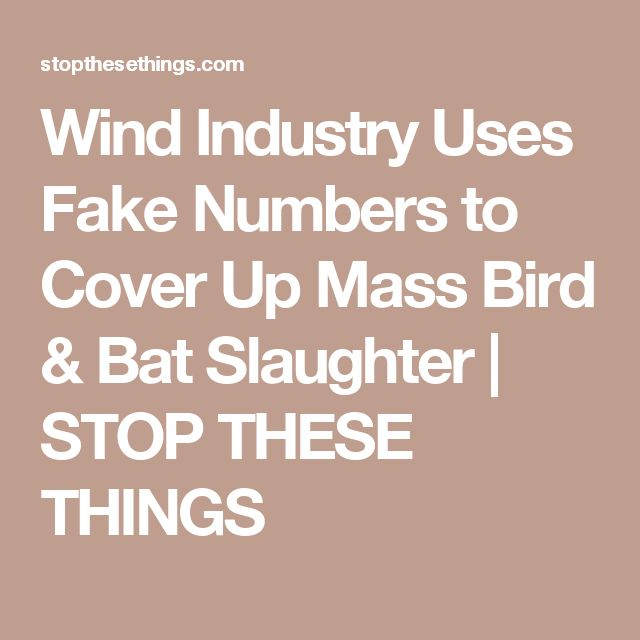 Wind Industry Uses Fake Numbers to Cover Up Mass Bird & Bat Slaughter | STOP THESE THINGS