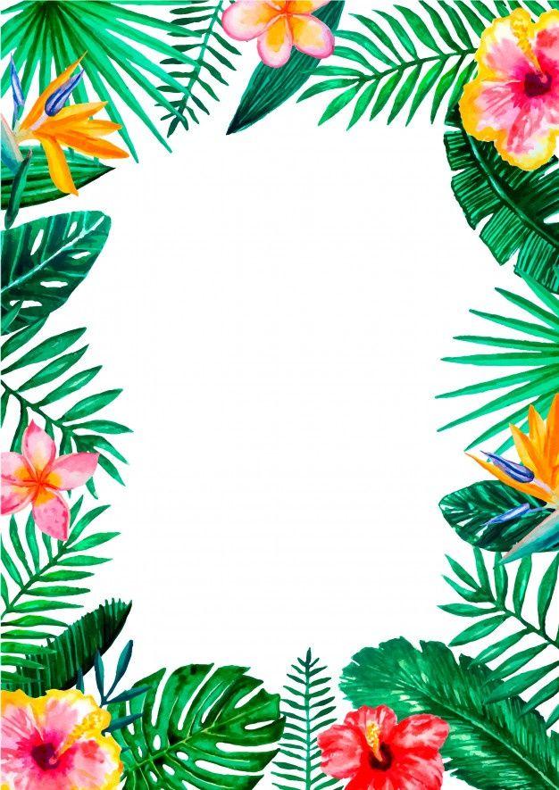Watercolor Tropical Floral Border Frame   Tropical frames ...