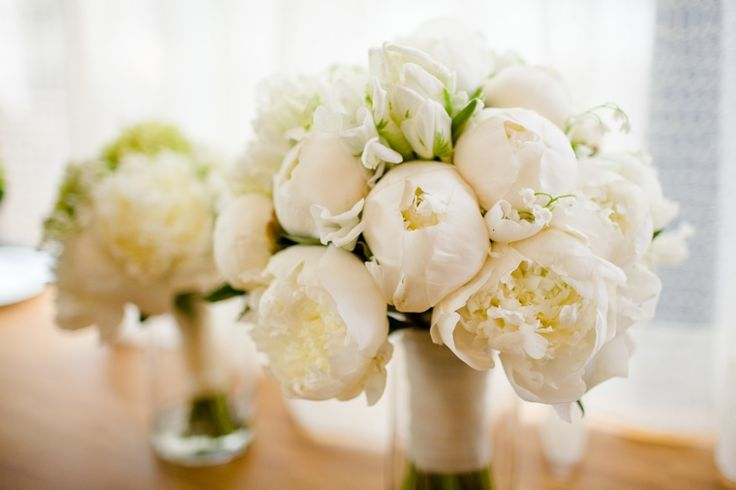 bridal bouquet made of peonies parrot tulips sweet pea and lily of