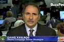 David Axelrod Struggles To Explain President Obama's Opposition To Gay Marriage
