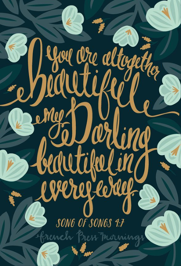 French Press Mornings - Song of Songs 4:7