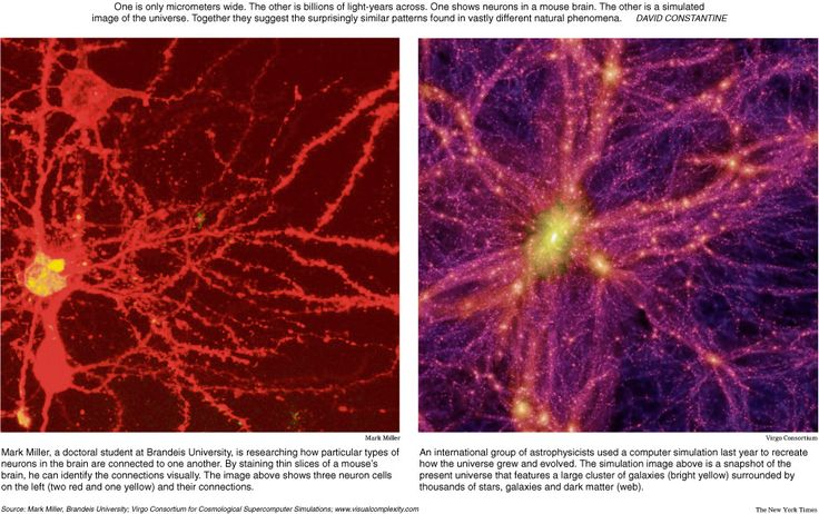 Left: Human Brain, Right: The Universe Outside