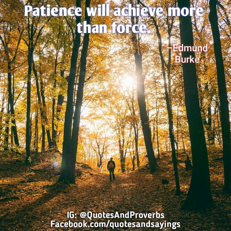 Patience will achieve more than force. -Edmund Burke #quotes #sayings #proverbs #thoughtoftheday #quoteoftheday #motivational #inspirational #inspire #motivate #quote #goals #determination #quotesandproverbs #motivationalquotes #inspirationalquotes #success #entrepreneur