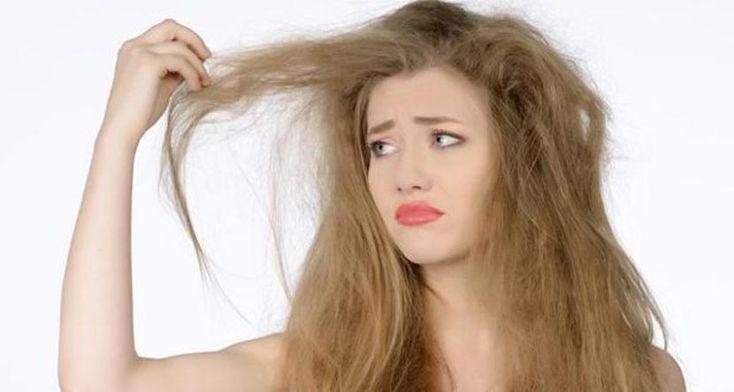 Mejor champú y acondicionador para pelo seco (I) - http://www.entrepeinados.com/mejor-champu-y-acondicionador-para-pelo-seco-i.html
