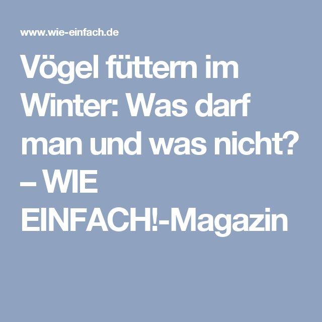 Vögel füttern im Winter: Was darf man und was nicht? – WIE EINFACH!-Magazin