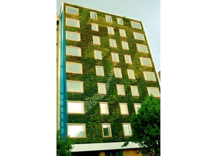 Paiaijsmo Urbano, Hotel Gaia, Colombia