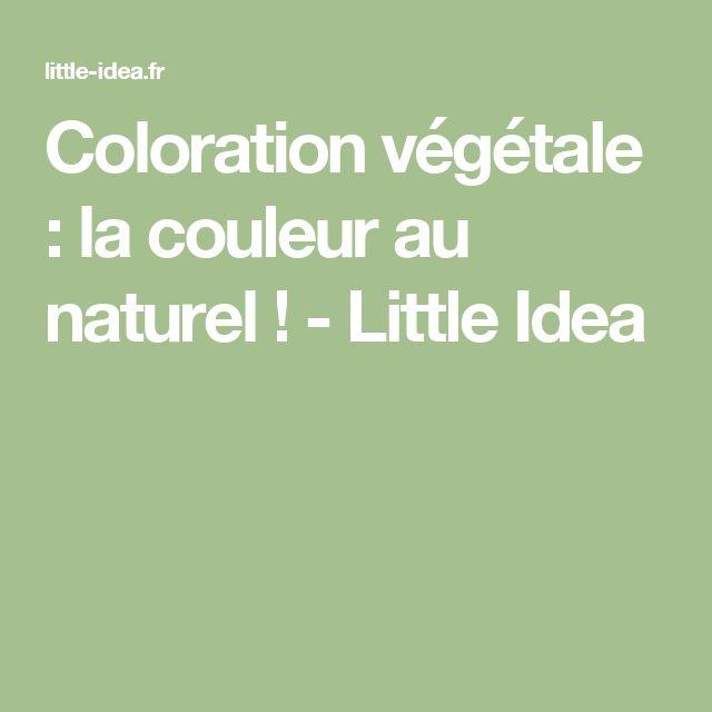 coloration vgtale la couleur au naturel little idea - Coloration Vgtale Maison