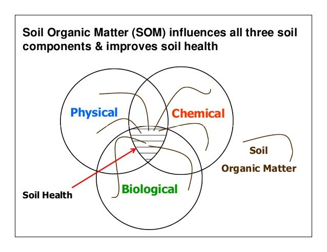 17 best images about soil health on pinterest back to for Soil organic matter