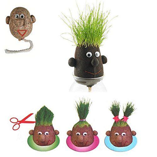 Monsieur Herbe – Grasshead – Petit modèle de 5 cm – Faites pousser ses cheveux et couper lui ! Cadeau nature original – Tête en forme de…