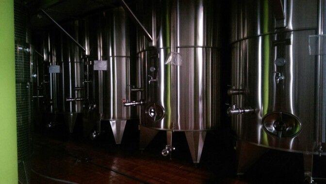 Riflessi verdi. Il colore fa parte della nostra vita. #Vivera  #Etna #Winery #colori della #Sicilia +Vivera Etna Winery