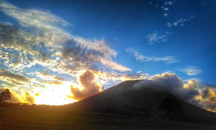 sunset lokon mount with any bird